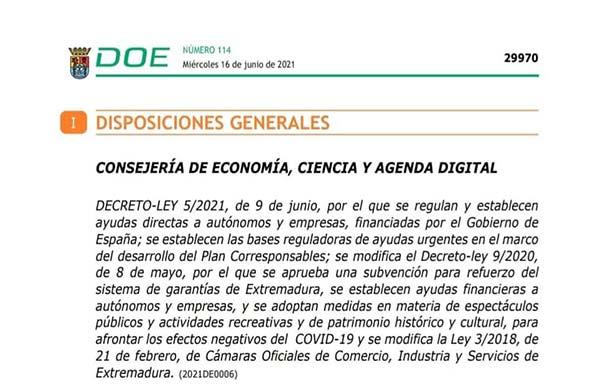 Convocatoria de ayudas directas a autónomos y empresas afectados por la covid-19 dirigidas a reducir el endeudamiento
